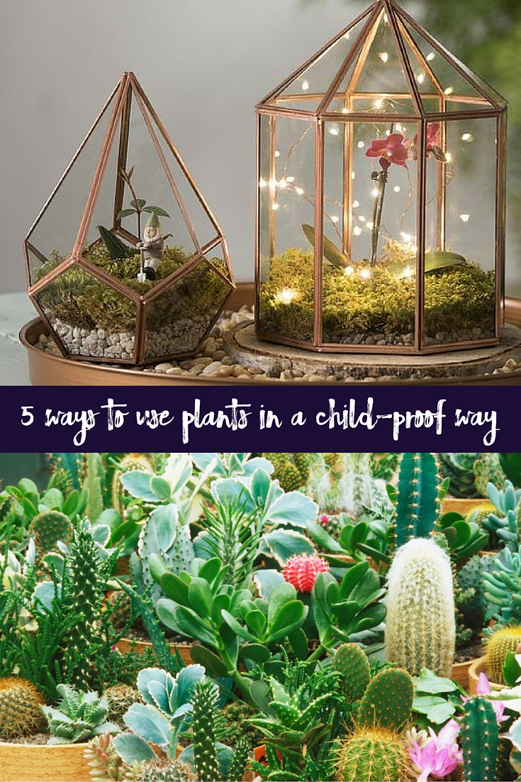 child-proof way of using plants