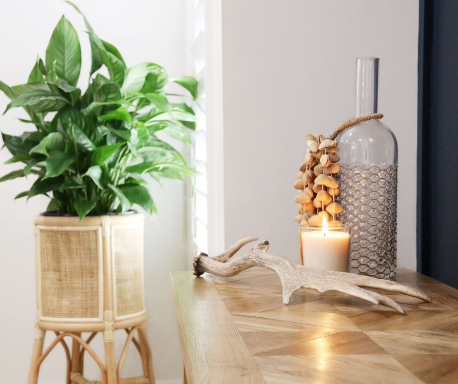 Renovate with Naomi Findlay - Styling